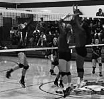 volleyball-berthold